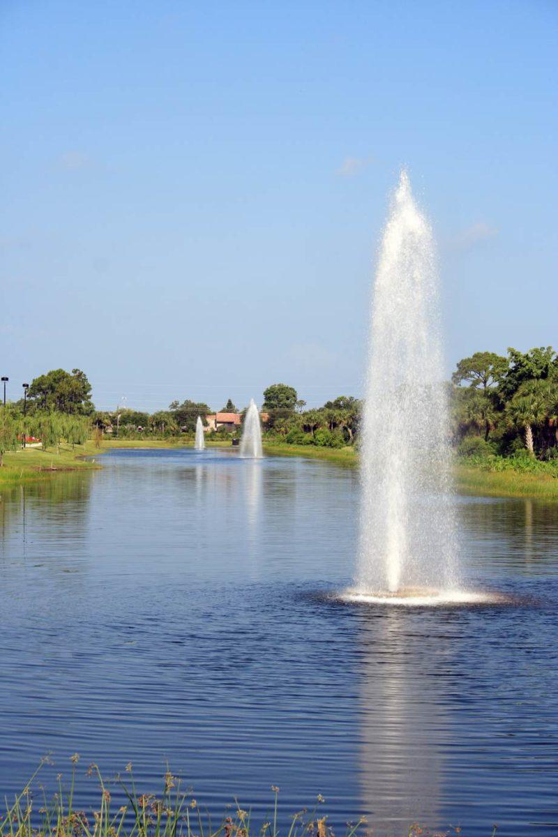 Savannah Floating Fountains